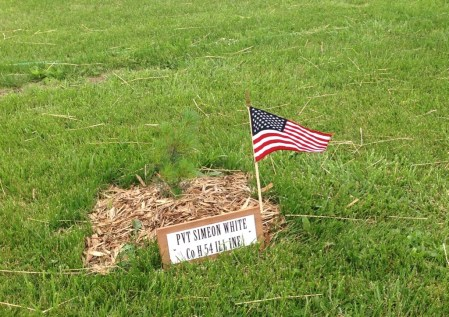 Trees were planted in memory of those Civil War Soldiers buried in this cemetery